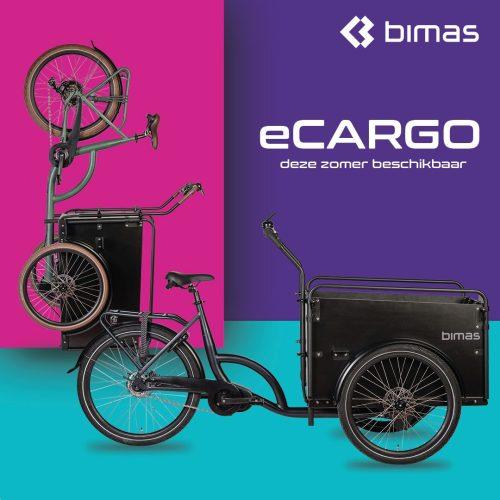 Bimas Ecargo 3.0 elektrische bakfiets